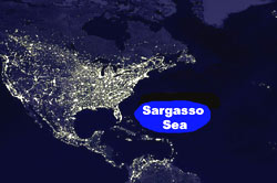 Image of a map showing the location of the Sargasso sea.