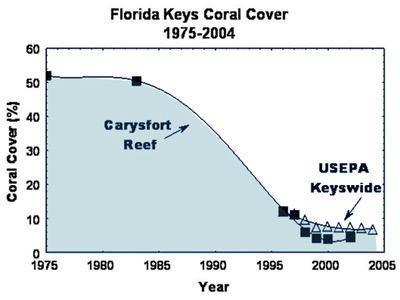 There was a 92 percent loss of living coral on Carysfort between 1975 and 2000.  Credit:  Dustan and Halas; FKNMS Coral Reef Evaluation and Monitoring Project