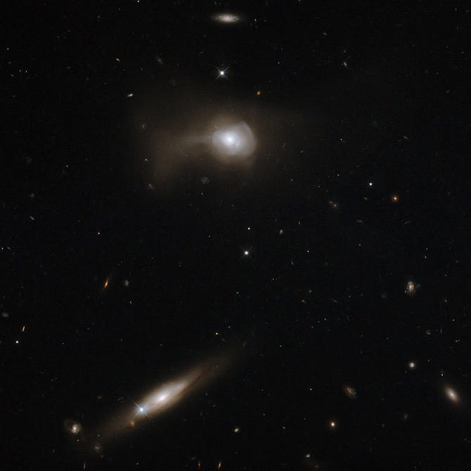 Markarian 779 has a distorted appearance because it is likely the product of a recent galactic merger between two spirals.