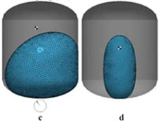 Equilibrium bubble configurations predicted by SE-FIT in fuel tanks for a given gravitational acceleration (a, c) or centrifugal acceleration (b, d). (Chen, Y., Schaeffer, B. M., Weislogel, M. M., Zimmerli, G. A.)