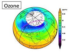 Ozone destruction was activated with ClO and HCl on Jan. 23, 2010. It is shown as the high ClO region (see