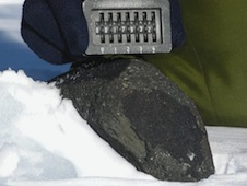 An antarctic meteorite analyzed in the study