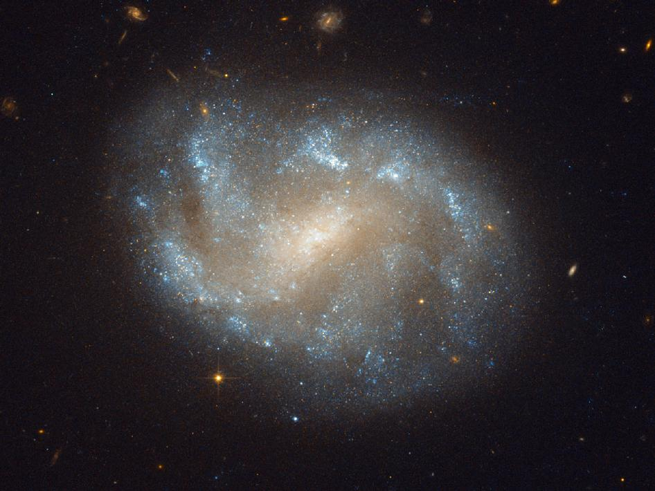 Hubble Image of Galaxies' El Dorado