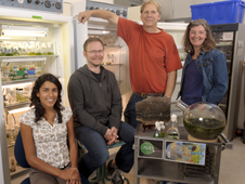 Members of the Ames algae crew include (from left to right) Angela Detweiler, Erich Fleming, Brad Bebout and Lee Bebout.