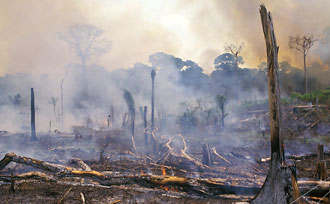 Photograph of burning field and smoke in the Amazon