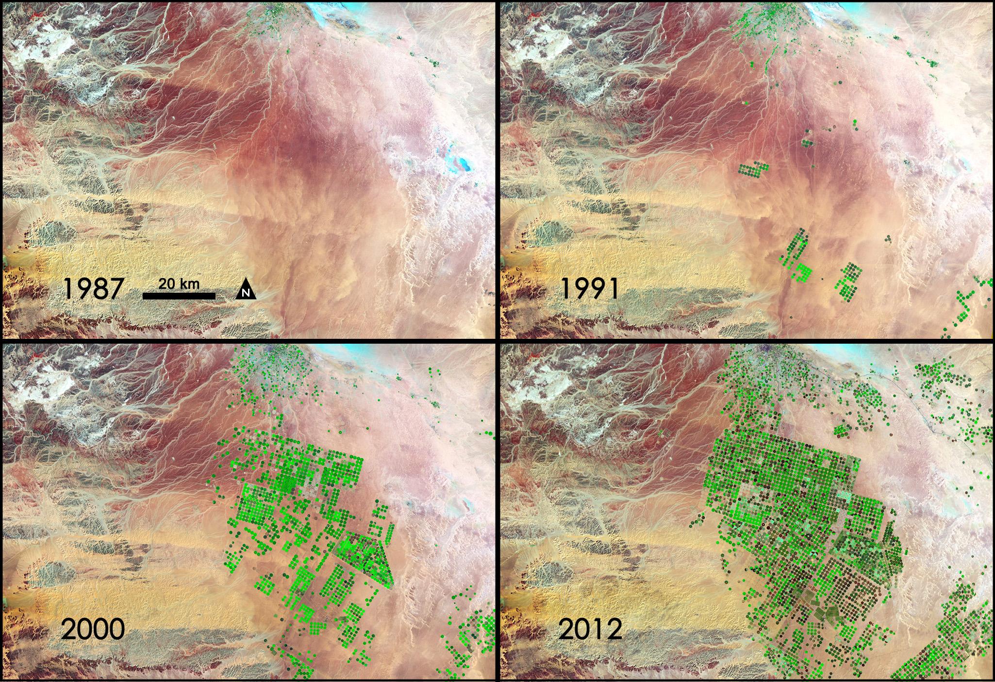 NASA - NASA Sees Fields of Green Spring up in Saudi Arabia