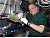Astronaut T.J. Creamer clips small evergreen plants