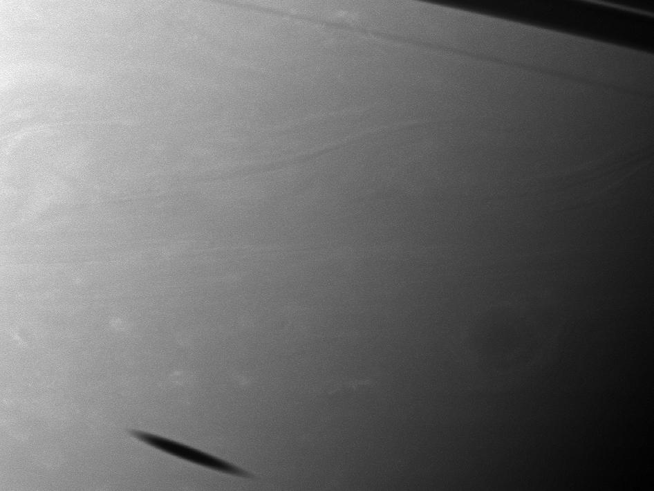 The shadow of the moon Mimas creates a smudge on the southern hemisphere of Saturn in this view from the Cassini spacecraft.