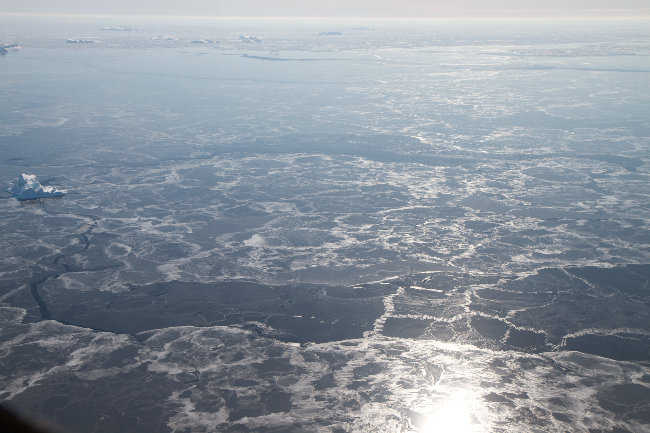 Nasa icebridge arctic 2012 the sun reflects over thin sea ice and a few floating ice bergs near the denmark publicscrutiny Images