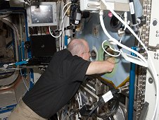 Astronaut Don Pettit conducts a BASS session in the Microgravity Science Glovebox. (NASA)