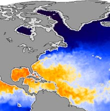 Atlantic Sea Surface Temperatures