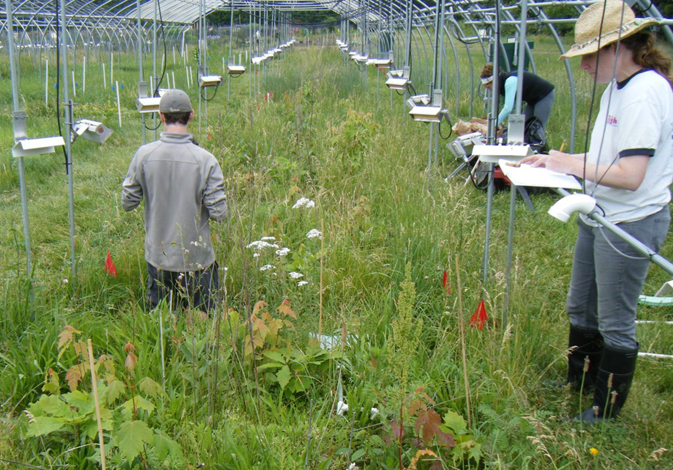 Researchers with the Boston-Area Climate Experiment