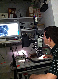 Student using a microscope in a laboratory