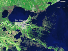 Landsat image of the Mississippi Delta