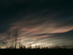 Polar stratospheric clouds (PSCs)
