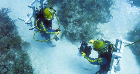 Image of two aquanauts mapping the coral reef.