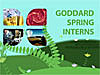 Goddard Spring Interns