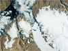 satellite image of Petermann Glacier