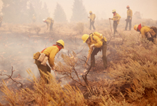 Shrouded in smoke, firefighters in yellow shirts and helmets work to bury smaller flames among the scrub covering a hilltop.