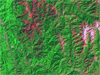 Landsat image of Trinity, Calif., region in 2000