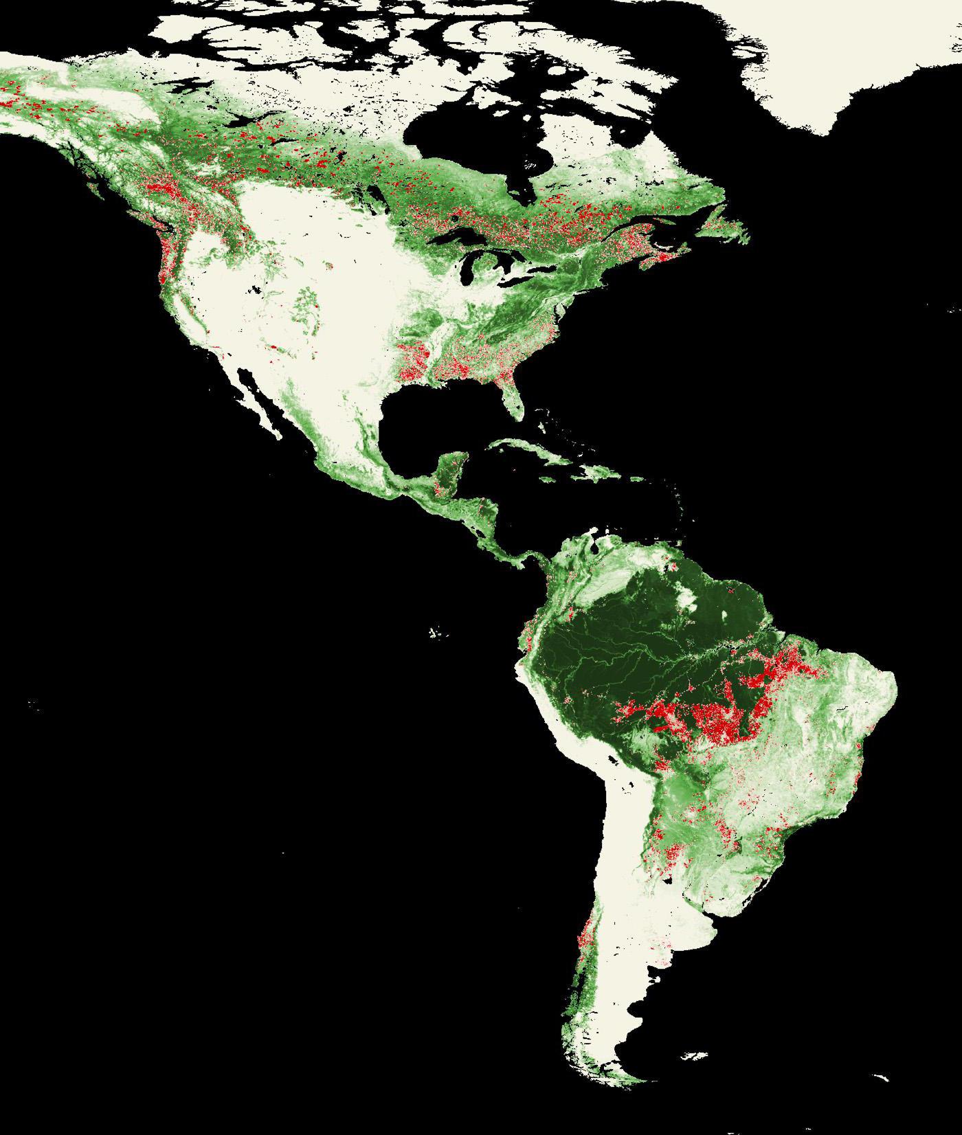 Landsat Top 10: International Deforestation Patterns in ...