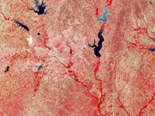 Dallas spreads like a pink blur across a landscape false-colored like a slab of red meat cut with navy blue reservoirs