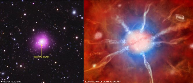Left, a composite image of the Phoenix Cluster. Right, artist concept of its central galaxy