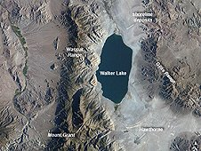 This astronaut photograph for the Crew Earth Observations highlights Nevada's Walker Lake, one of only two remnant lakes that contain water throughout the year. Walker Lake is located in an enclosed basin bounded by the Wassuk Range to the west and the Gillis Range to the east. (NASA)