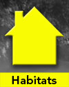 The word Habitats below simple yellow house