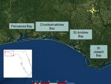 Florida Panhandle bays studied using HICO data, specifically Pensacola, Choctowhatchee, St. Andrew and St. Joseph Bays