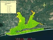 Map of chlorophyll a for Pensacola Bay derived from HICO data.