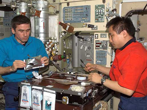 Expedition 7 Commander Yuri Malenchenko, left, and NASA ISS Science Officer Ed Lu