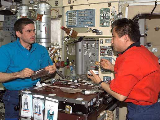 Expedition Seven Commander Yuri Malenchenko, left, and NASA ISS Science Officer Ed Lu