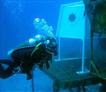 NASA - The Tree House Detectives and the Case of the Ocean ...