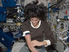 Commander Sunita Williams performs a blood draw for the Nutrition Status Assessment (Nutrition) experiment in the Columbus laboratory module, during Expedition 33. (NASA)