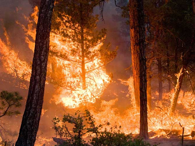 The Whitewater-Baldy Complex wildfire in Gila National Forest, New Mexico, as it burned on June 6th, 2012.