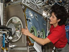 Expedition 32 Flight Engineer Sunita Williams works at the Microgravity Science Glovebox in the Destiny laboratory of the International Space Station, August 2012. (NASA)