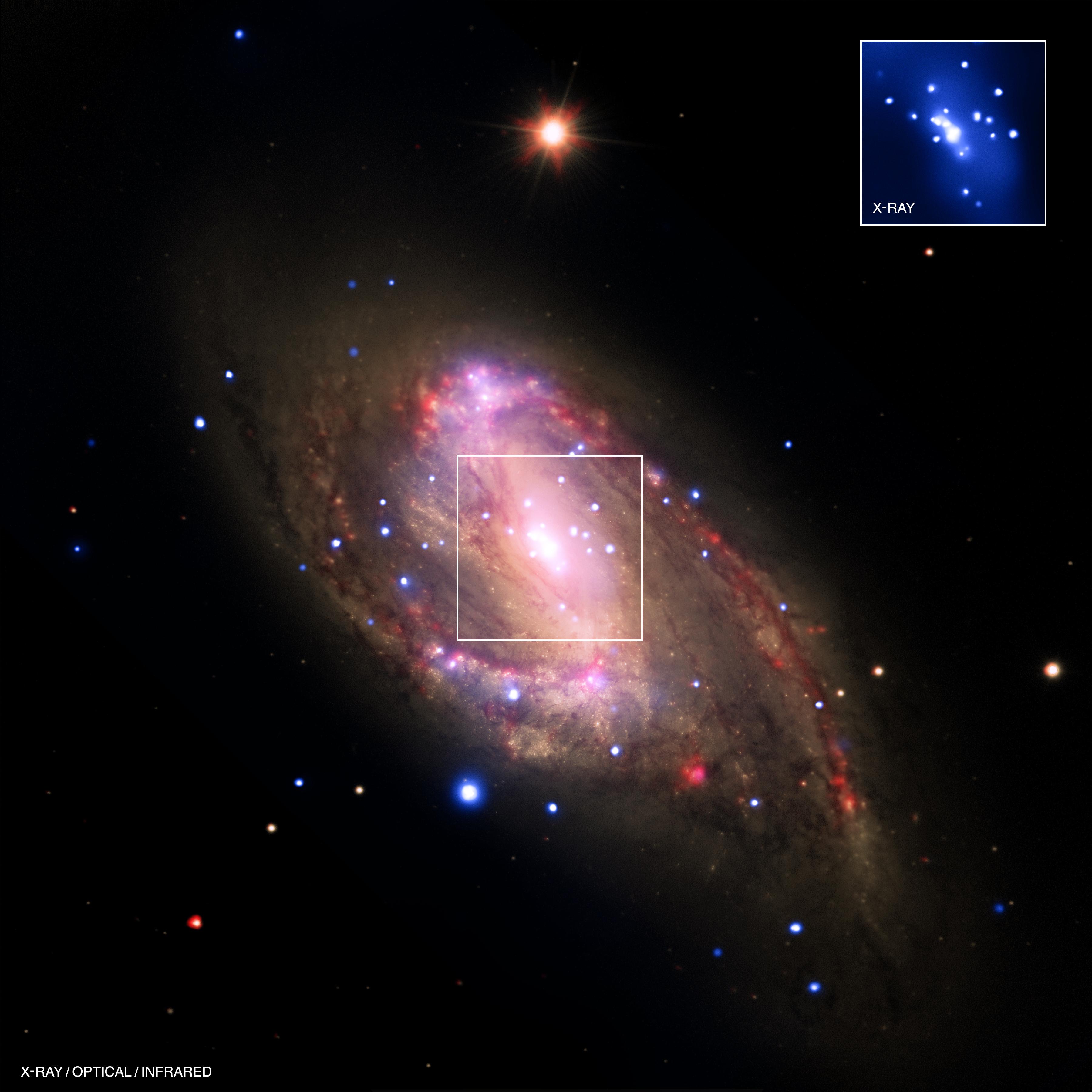 d8087bf5cacbc Sparkling Galaxy Reveals Black Hole