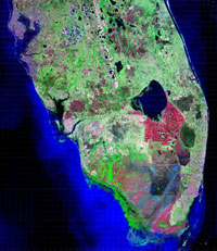 This image mosaic of South Florida was acquired by the Landsat-5 satellite during the late-1980's.