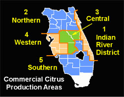 The State's citrus belt is divided into five production areas.