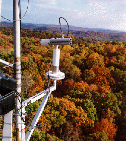 Sun Photometer in Broadleaf Deciduous Forest