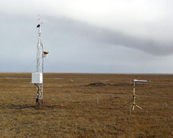 Micrometeorological Tower