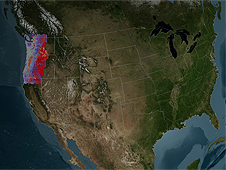 Kennedy's imagery covers lands managed by the U.S. Forest Service in Washington state, Oregon and northern California.