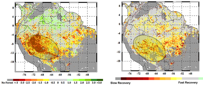 Amazon rainforests data measured by NASA satellites