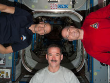ISS034-E-026598: Expedition 34 crew members