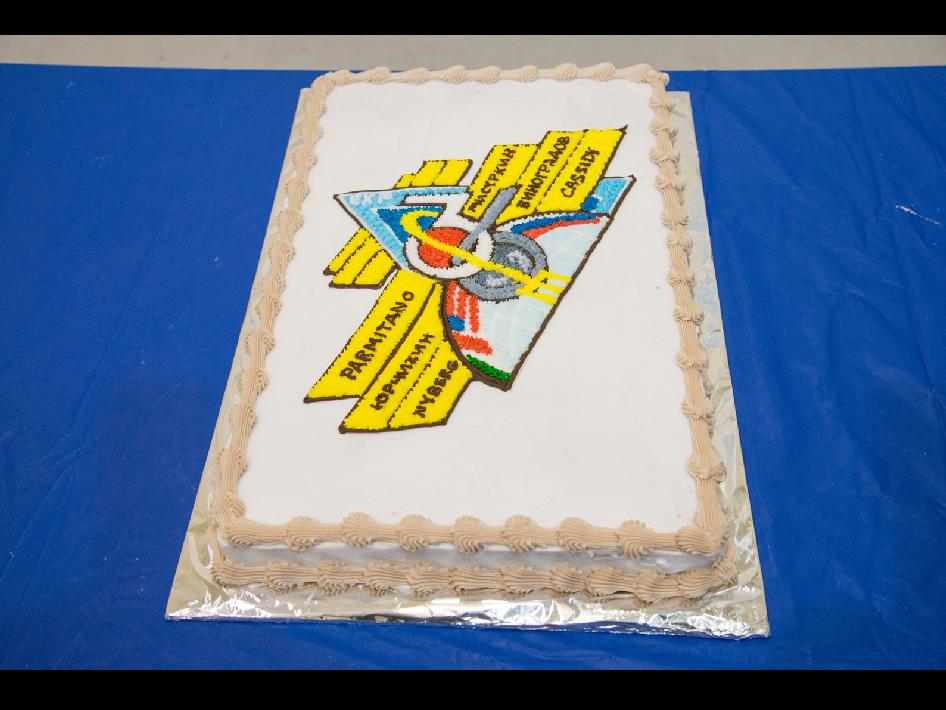 Expedition 36 Insignia Cake