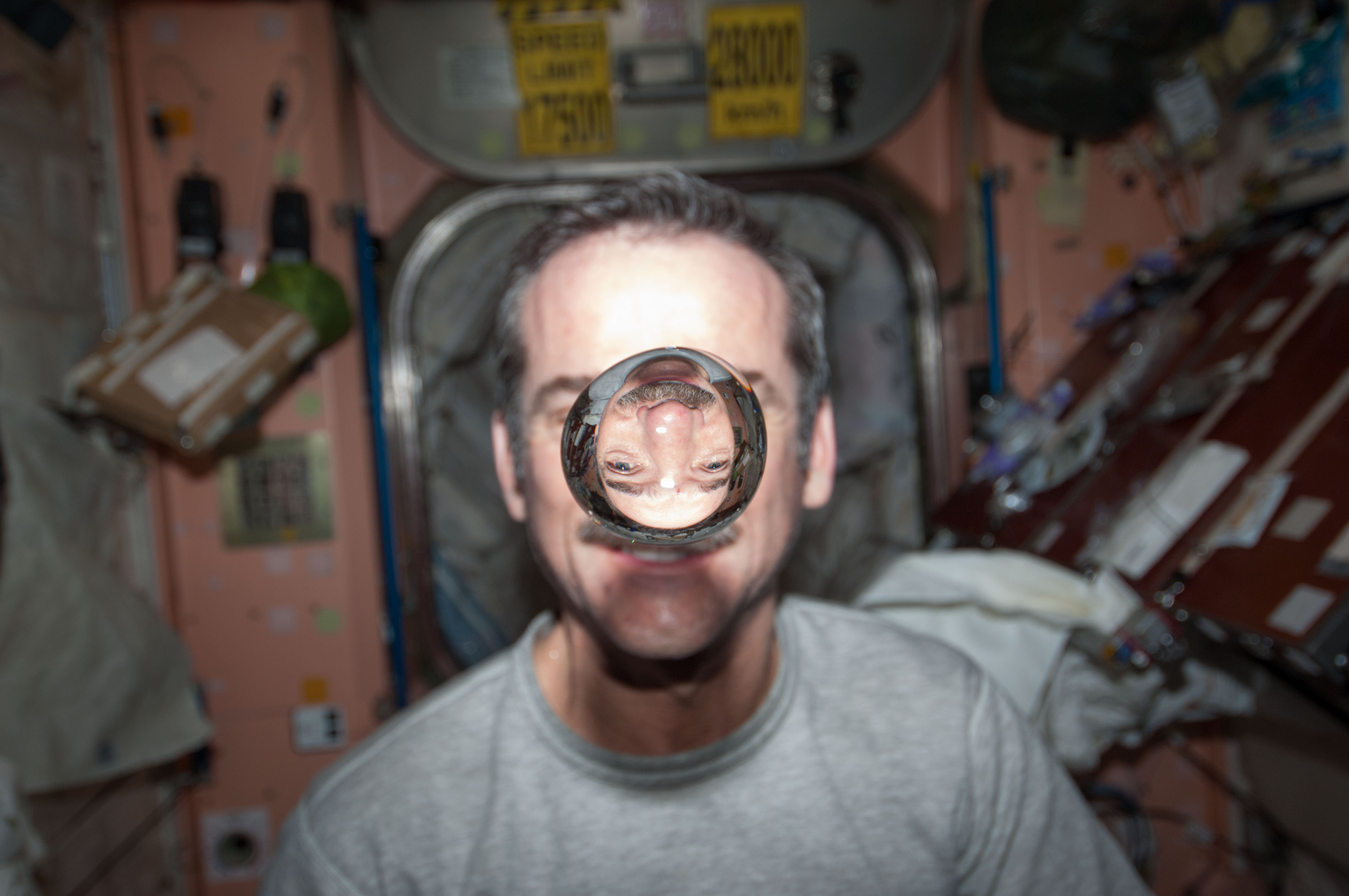 Image result for chris hadfield water