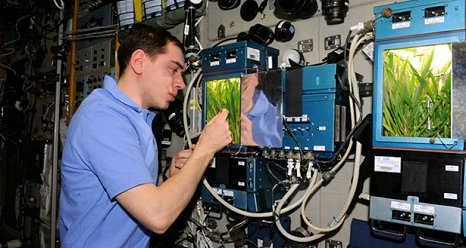 Some of the research on the International Space Station is already focusing on meeting the needs of long-term spaceflights beyond low-Earth orbit. During Expedition 29 in 2011, Russian cosmonaut Sergei Volkov checks the progress of new growth in the Rastenia investigation aboard the space station. (NASA)