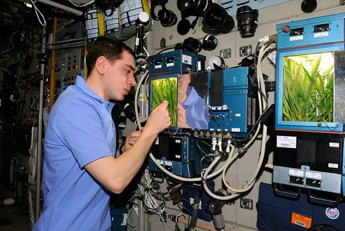ISS a pěstování rostlin