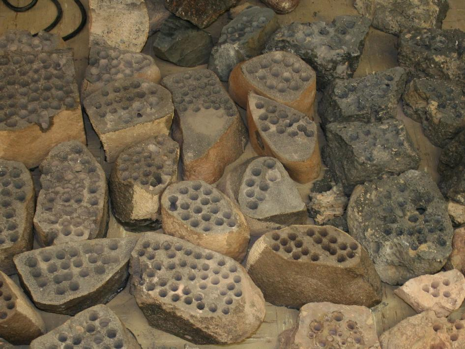 A group photo of some of the rocks used in bit development testing and lifespan testing in 2007